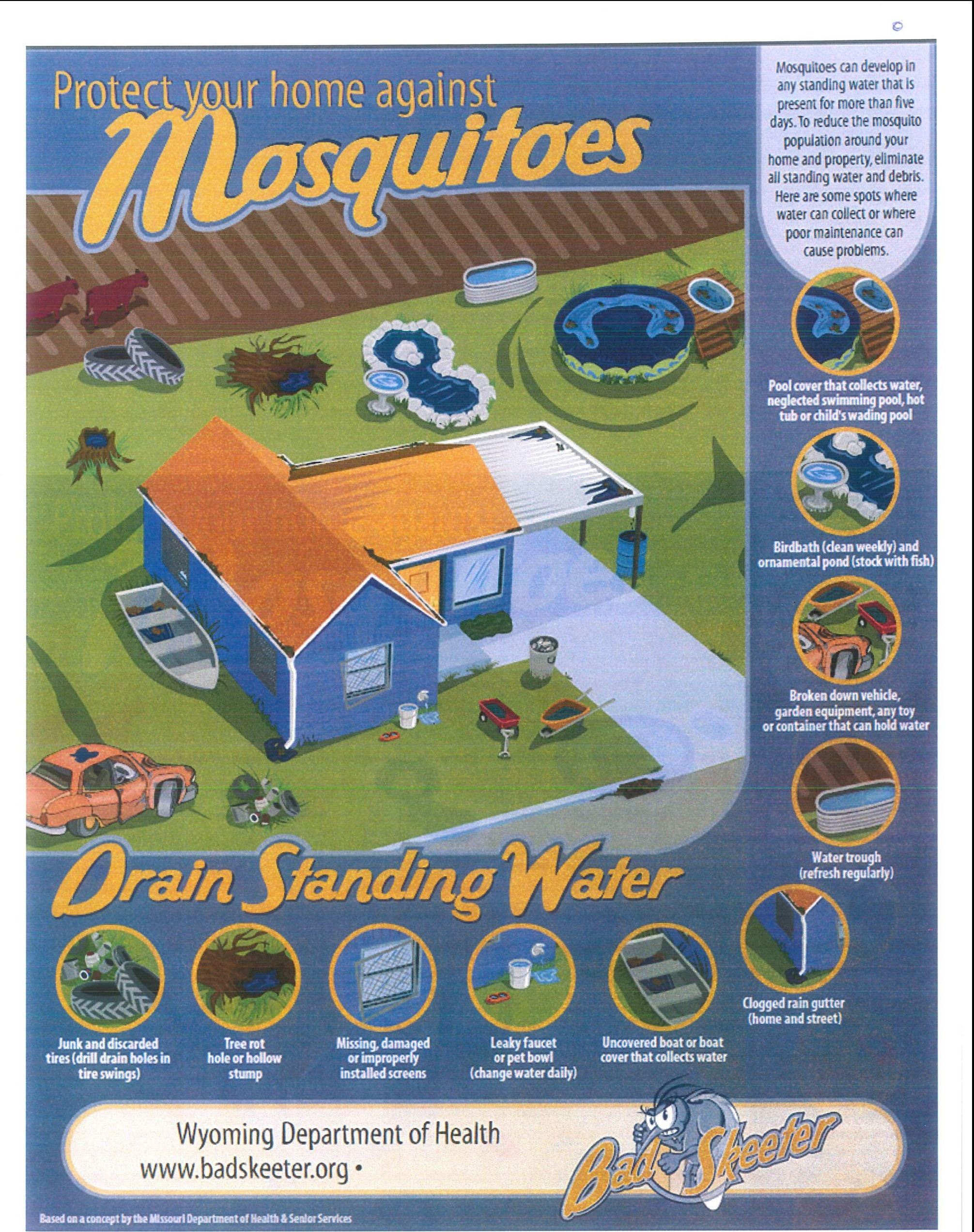 Mosquito Awareness Flyer